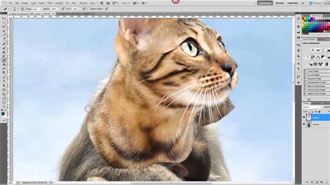 hybrid animal photoshop tutorial youtube