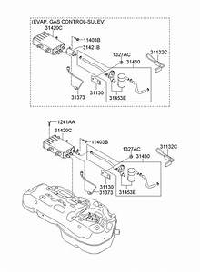 2010 Hyundai Sonata Filter  U0026 Canister Valve Assembly  Oct