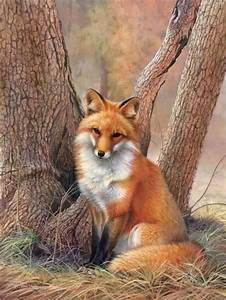 Red fox - sitting - winter full coat | Wood Carving Ideas ...