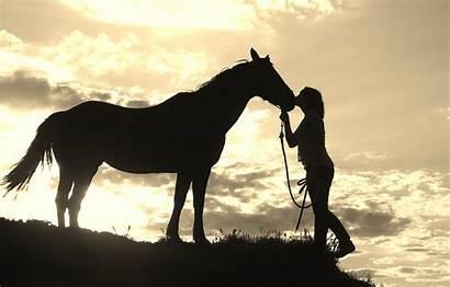 Horse Western Silhouette Desktop Background Wallpapers Windows