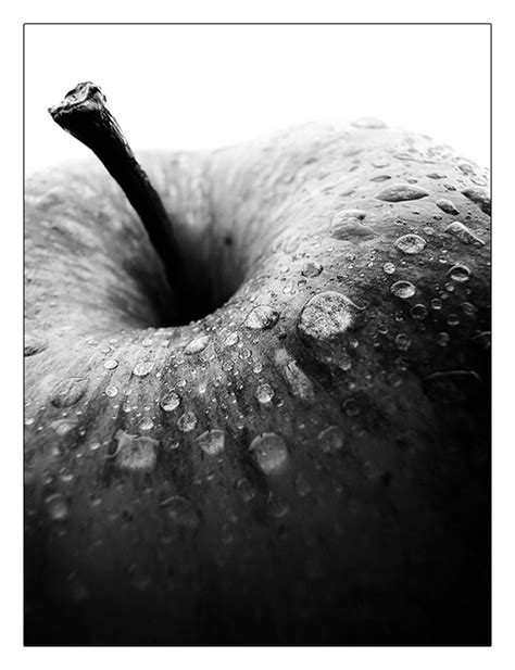 Apple Black And White By Thedefinition On Deviantart