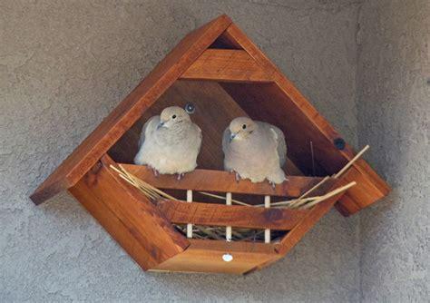 mourning dove bird house