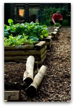 easy  ground vegetable gardening plans  ideas