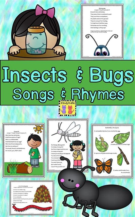 best 25 bug songs ideas on preschool bug 176 | fe6b1e4d1bac854f31a834ccd5b03cb8 insect songs preschool preschool bugs and insects