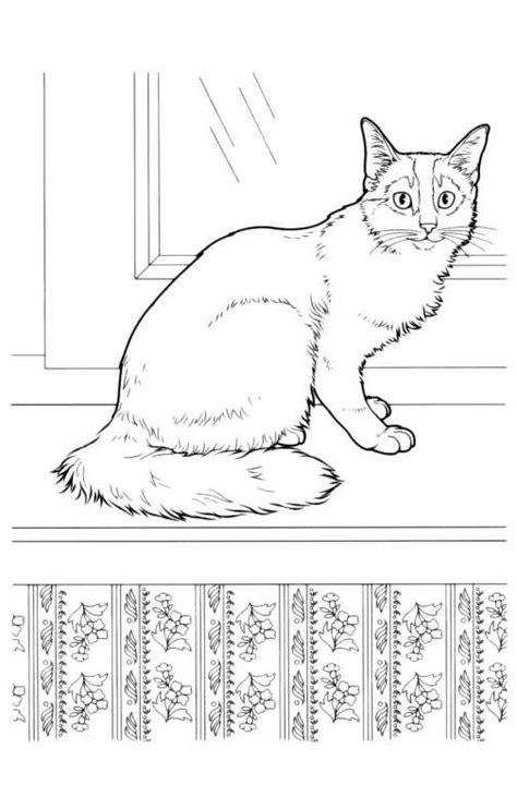 disegni da colorare  gatti