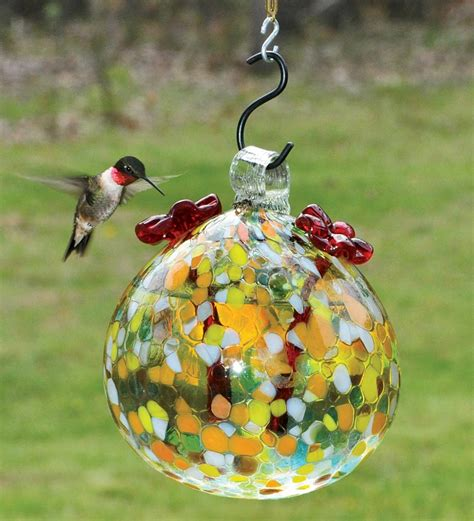 what do i put in my hummingbird feeder hummingbird photobomb i wanted a photo of the flowers