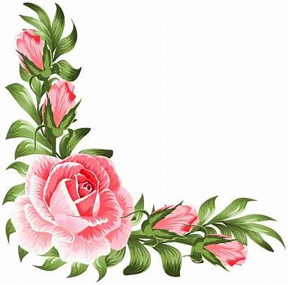 Corner Flower Rose Clipart Floral Clip Decoration