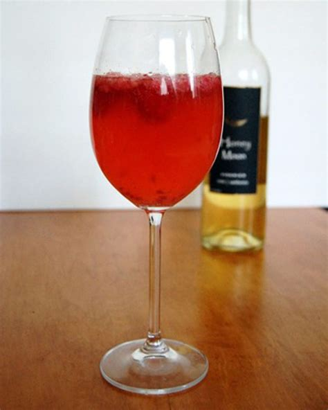 wine spritzer wine spritzer recipe dishmaps