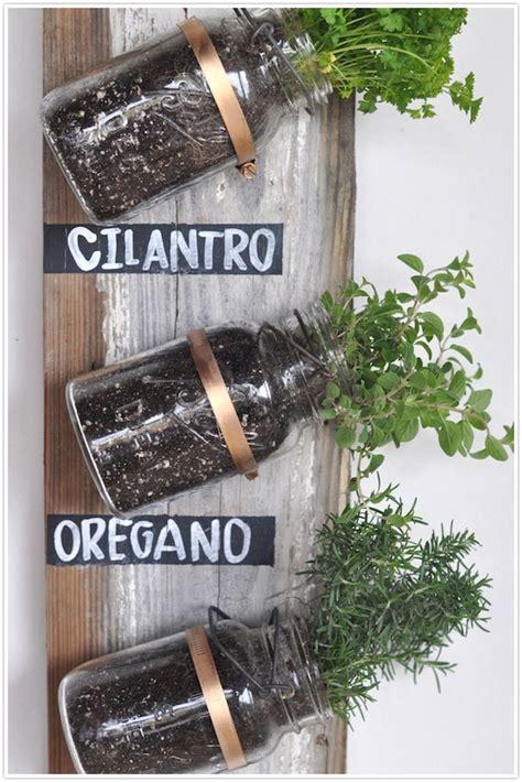 indoor herb garden dollar store