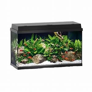 Aquarium Set Led : juwel primo 70 led black complete aquarium set ~ Watch28wear.com Haus und Dekorationen