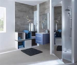 Deco Salle De Bain Gris : d co salle de bain gris et violet ~ Farleysfitness.com Idées de Décoration