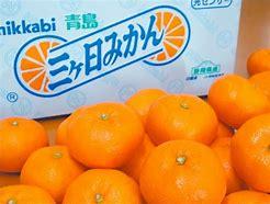 浜松市 三ケ日ミカン に対する画像結果