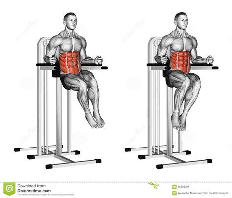 chair leg raise oblique exercising oblique raises on parallel bars stock