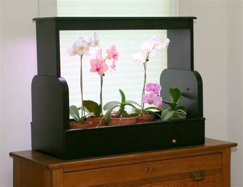 Grow Lights For Indoor Plants Singapore by Easy Ways To A Indoor Garden In Your Apartment