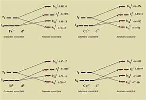 Diagram Of D