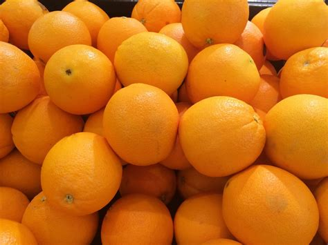 Free Images  Fruit, Produce, Japan, Living, Tangerine. Shopping Carts That Work With Paypal. Medicare Medigap Plans 2013 Colitis Flare Up. Washington State Vehicle Inspection. Trinity Life Bible College Round Rock Storage. Security Operations Center Best Practices. What Is Chemotherapy Used To Treat. Roofing Contractors Kansas City. Cheap Domain Names Com Beam Security Systems