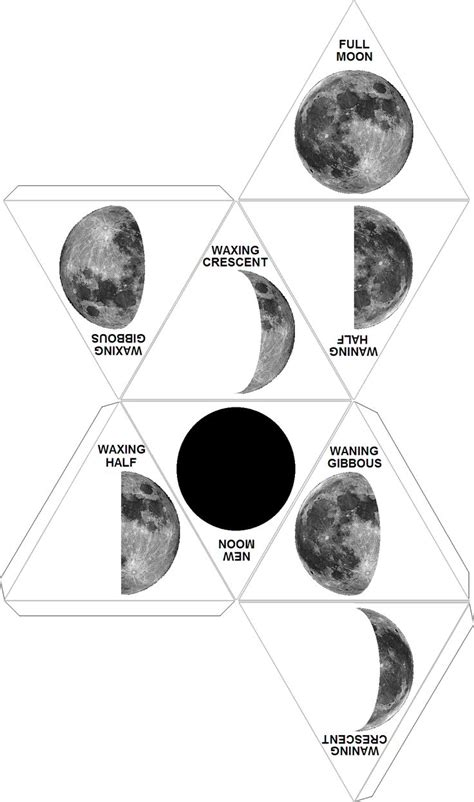 create moon phases foldable leave   names    students identify  phase