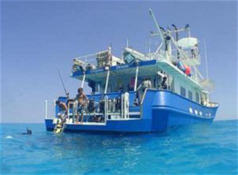 Dolphin Dream Boat Bahamas by Bahamas Charter Vessel Dolphin Dream