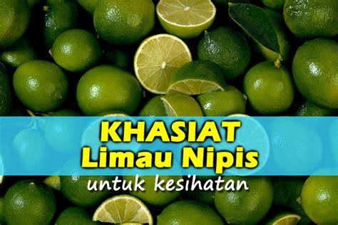 Khasiat Limau Nipis  Women Online Magazine