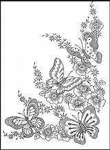 Butterfly Coloring Pages Above Credit sketch template