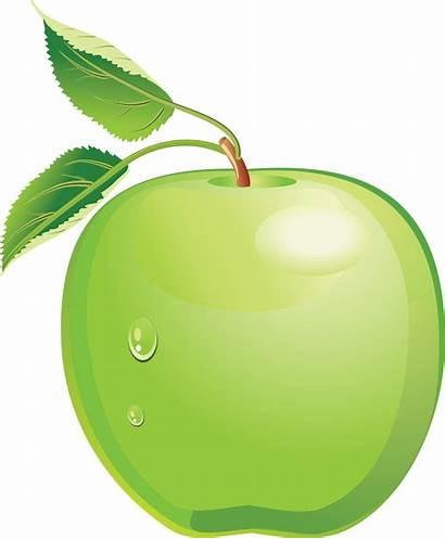 Apple Clipart Clip Fruits Vegetables Transparent Cliparts