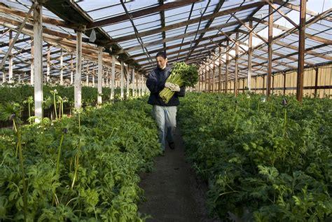 op駻a chambre d agriculture agriculture communauté d 39 agglomération toulon provence méditerranée