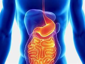 Affiliates In Gastroenterology - Aig Medical