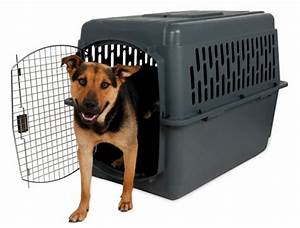 20 best dog crates reviews 2017 best cheap reviewstm With cheap dog crates for small dogs