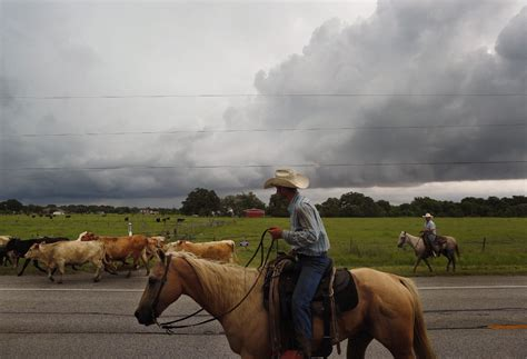 braces  severe weather  tornadoes