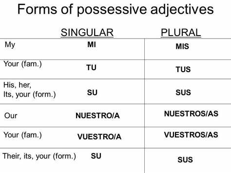Examples Of Spanish Sentences