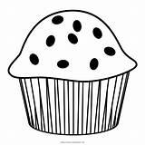 Coloring Muffin Muffins Colorare Template Disegni sketch template