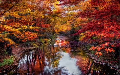 nature, Landscape, River, Leaves, Colorful, Trees, Fall ...