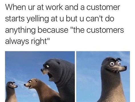 Finding Dory Memes - finding dory memes gerald the sea lion funny meme tweets teen com