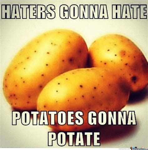 Potatoes Meme - haters gonna hater potatoes gonna potate by katexcr meme center