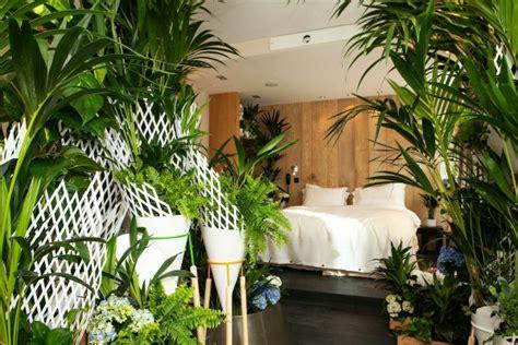plante dans chambre les plantes vertes dans la chambre annikapanika