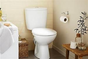 Leaking Toilet Flapper Waste Money