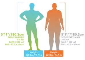 Body Composition Weight