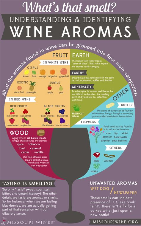 whats  smell understanding identifying wine aroma