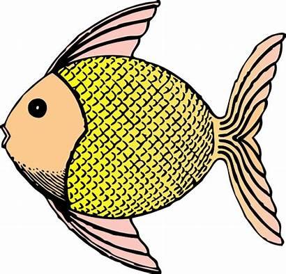 Fish Clip Tropical Clipart Svg Cliparts Clker