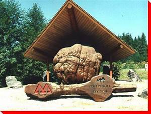 World's Largest Burl - Port McNeil, British Columbia - by ...