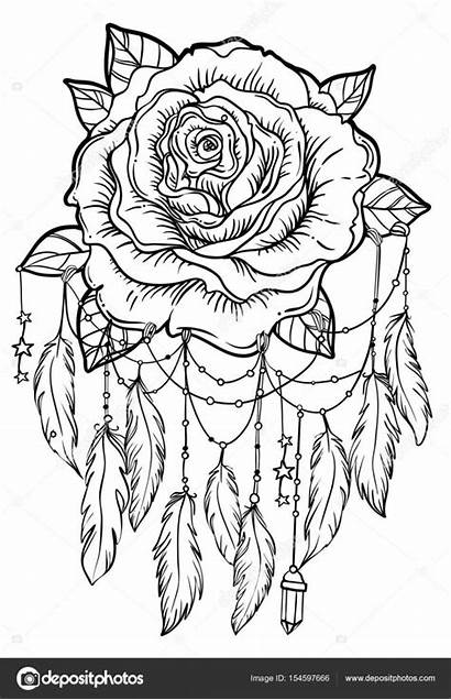 Catcher Dream Rose Flower Detailed Vector Coloring