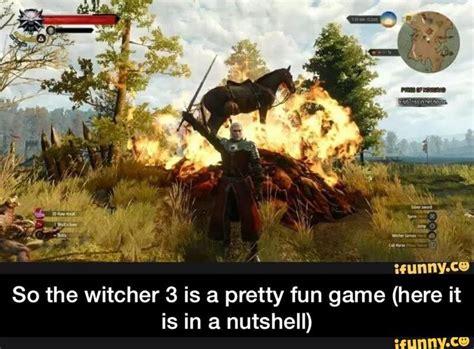 Witcher 3 Memes - 22 best the witcher 3 images on pinterest videogames video games and the witcher 3