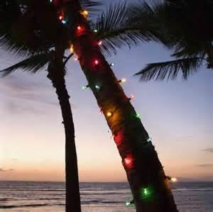 Beach Palm Tree Christmas Lights