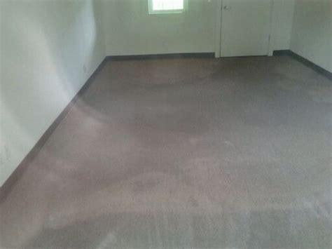 carpet safe   wet thriftyfun