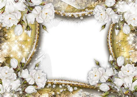 frame flowers rose white transparent  images