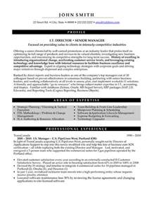 senior management resume exles it director or senior manager resume template premium resume sles exle