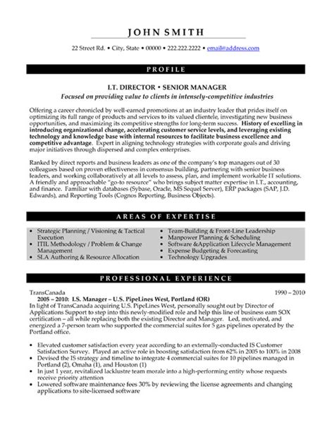 senior executive resume top executive resume templates samples