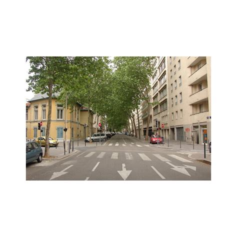 avenue felix faure avenue f 233 lix faure les rues de lyon