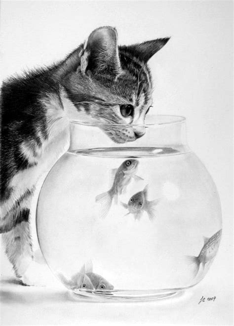 animal pencil drawings ideas  pinterest