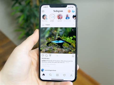 instagram bug caused horizontal feed briefly roll